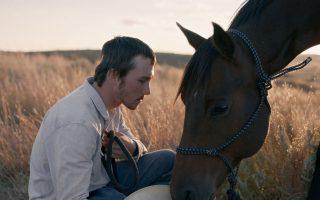 Στιγμιότυπο από το βραβευμένο με τη Χρυσή Αθηνά «The Rider».