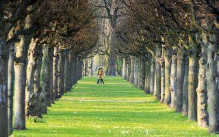 Περίπατος στους κήπους του Charlottenburg Palace και έπειτα στάση για μπίρα στο Weiss Blau. (Φωτογραφία: AP Photo/dpa)