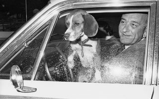 O Αμερικανός πρόεδρος Λίντον Τζόνσον αφήνει ένα από τα δύο σκυλιά ράτσας Μπιγκλ που διαθέτει να πάρει λίγο αέρα από το παράθυρο του αυτοκινήτου που επιβαίνει, στο Τζόνσον Σίτι του Τέξας, το 1965. O Αμερικανός πρόεδρος είχε δύο Μπίγκλ ως κατοικίδια, τα οποία είχε ονομάσει Εκείνος και Εκείνη. (AP Photo)