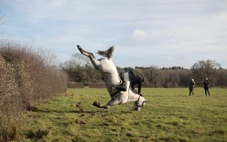 Η κατάρα της αλεπούς. Για κυνήγι ξεκίνησαν στο Chiddingstone της Βρετανίας. Μόνο ένα μέλος του Old Surrey Burstow τα βρήκε σκούρα και μάλιστα ενώπιον φωτογράφων. REUTERS/Simon Dawson