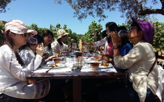 Δοκιμάζοντας κρασί στο κτήμα του Βαρθολομαίου Λυραράκη. Πάνω από 4.000 τουρίστες επισκέπτονται το οινοποιείο του κάθε χρόνο.