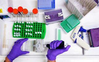 Τα συμπεράσματα της έρευνας μπορεί να αποδειχθούν εξαιρετικά σημαντικά για βιομηχανικές και ιατρικές εφαρμογές.
