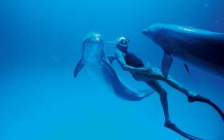 Ο Ζακ Μαγιόλ κολυμπά μαζί με δελφίνια στις Μπαχάμες το 1994. © Junji Takasago