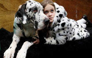 Πιστιλωτά. Ζευγάρι ταιριαστό η Claudia Kelleway και ο Ruby ο Μεγάλος Δανός. Οι δυο τους περιμένουν αγκαλιά την έναρξη της πρώτης ημέρας του Crufts Dog Show στο Birmingham, με την συμμετοχή υπέροχων σκύλων από κάθε ράτσα του κόσμου. REUTERS/Darren Staples