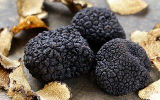 Οι τιμές της μαύρης τρούφας κυμαίνονται από 300-1.200 δολ. ανά λίβρα (454 γραμμάρια) ανάλογα με το είδος της, ενώ οι λευκές magnatums κοστίζουν 5.000 -7.000 δολάρια.