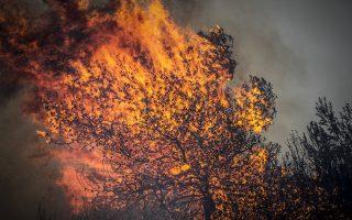 Πυρκαγιά στην Ηλεία, στην Φρίξα, τη Σκιλλουντία και την παλιά Σκιλλουντία του δήμου Ανδρίτσαινας - Κρεστένων.(EUROKINISSI/ILIALIVE.GR/ΓΙΑΝΝΗΣ ΣΠΥΡΟΥΝΗΣ)