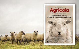 agricola0