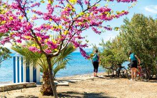 Στάση για βουτιά στην παραλία του πρώτου Μαραθώνα. (Φωτογραφία: © ΔΗΜΗΤΡΗΣ ΒΛΑΪΚΟΣ)