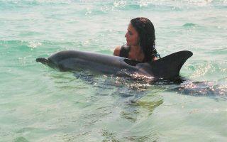 H Αναστασία Κομνηνού, αναπληρώτρια καθηγήτρια της Χειρουργικής Ιατρικής Εξωτικών και Αγριων Ζώων, με ένα τραυματισμένο μικρόσωμο δελφίνι που είχε βγει στα ρηχά, στη Χαλκιδική.