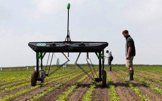 To ρομπότ που κατασκεύασε η νεοφυής ελβετική εταιρεία ecoRobotix ψεκάζει ένα χωράφι με ζαχαρότευτλα στην πόλη Μπαβούα της Ελβετίας, στη διάρκεια δοκιμών για τον έλεγχο της καλής λειτουργίας του.