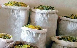 Πριν από λίγες ημέρες, η αστυνομία συνέλαβε οκτώ Αλβανούς στον Γράμμο και κατάσχεσε σάκους με 132 κιλά διαφόρων βοτάνων.