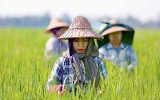naipitaoy-mianmar-2248529