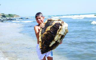 Ο 11χρονος Ζήσης Βαγγούσης με το κουφάρι μιας θαλάσσιας χελώνας, προσπαθεί να ευαισθητοποιήσει τον κόσμο ώστε να σταματήσει η ρίψη πλαστικών και απορριμμάτων στη θάλασσα.