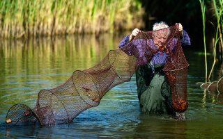 Ο αλιεύς Κλάους Χίντε ελέγχει τις παγίδες του για αμερικανικές καραβίδες στο πάρκο Μπρίτσερ του Βερολίνου.