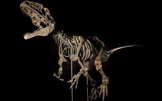skeletos-deinosayroy-poylithike-se-idioti-anti-2-3-ekat-dolarion-se-dimoprasia-sto-parisi0