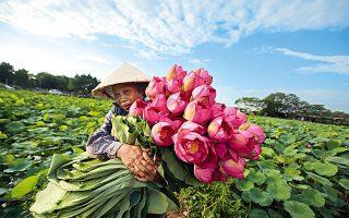 Φωτογραφία: © EPA/LUONG THAI LINH