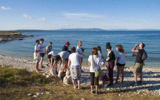 Τις παραλίες της Ευρώπης καθαρίζουν μεικτές ομάδες εθελοντών από διαφορετικά κράτη. Στη φωτογραφία, Ελληνες, Κροάτες και Πορτογάλοι νέοι μαζεύουν πλαστικά από ακτή στην Pula της Κροατίας, στο πλαίσιο του προγράμματος Erasmus+ «Save the Wave». Σε μόλις δύο ώρες, οι 25 νεαροί συγκέντρωσαν από μια έκταση μόλις 400 τ.μ. περίπου έξι κυβικά μέτρα αποβλήτων. Δηλώνουν ενθουσιασμένοι με τον στόχο, αλλά και για το πνεύμα που αναπτύσσουν ως ομάδα.