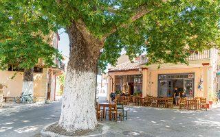 Στο χωριό Αρμένοι, λίγο πριν από την πόλη των Χανίων. (Φωτογραφία: © ΝΙΚΟΛΑΣ ΛΕΒΕΝΤΑΚΗΣ)