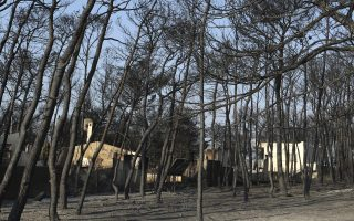 Damaged houses are seen behind the burned forest in Rafina, east of Athens, Wednesday, July 25, 2018. Rescue crews were searching through charred homes and cars for the missing after wildfires decimated seaside areas near the Greek capital, killing at least 74 people and sending thousands fleeing. (AP Photo/Thanassis Stavrakis)