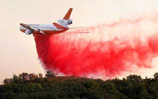 Δασικές πυρκαγιές έχουν ξεσπάσει σε πολλά μέρη του κόσμου.
