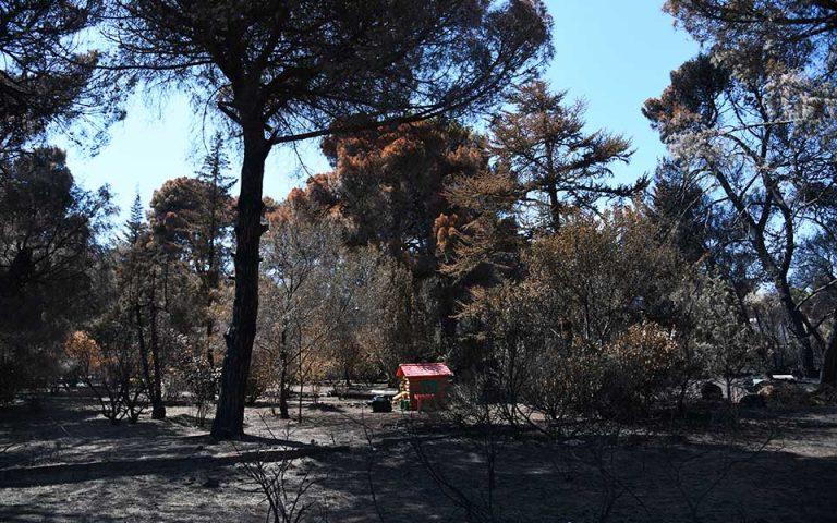 Ανεβαίνει ο αριθμός των νεκρών από την πυρκαγιά στο Μάτι