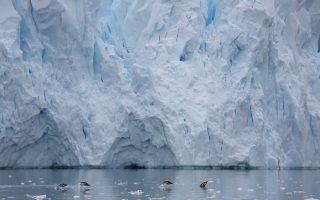 Πιγκουίνοι κολυμπούν μπροστά από ένα παγόβουνο που λιώνει στην Ανταρκτική. Η κλιματική αλλαγή που έχει προκαλέσει ο άνθρωπος πλήττει ήδη με ακραία φαινόμενα όλα τα μήκη και πλάτη της Γης.