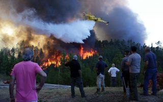 Στη μεγάλη περυσινή φωτιά στο Πεντρογκάο Γκράντε έχασαν τη ζωή τους 64 άνθρωποι. Λίγο αργότερα, νέες πυρκαγιές σκότωσαν άλλους 42 πολίτες.