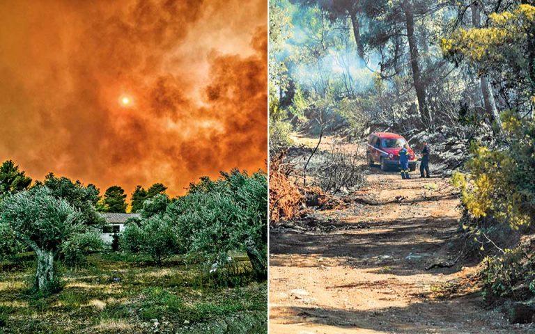 Μεγάλη κινητοποίηση και συντονισμός για τη φωτιά στη Βόρεια Εύβοια