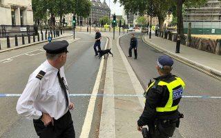 Εκπαιδευμένα σκυλιά ελέγχουν την περιοχή γύρω από το βρετανικό Κοινοβούλιο, μετά το χθεσινό τρομοκρατικό –σύμφωνα με τις Αρχές– πλήγμα.