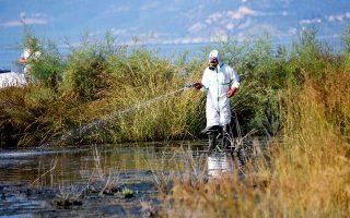 Ψεκασμός για τον ιό του Δυτικού Νείλου στο Ναύπλιο στις αρχές Ιουλίου.