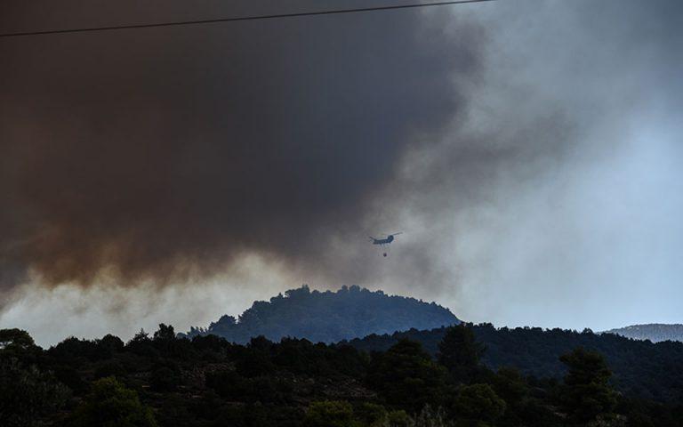 Δήμαρχος Ψαχνών: Δύο ενεργά μέτωπα φωτιάς αυτή τη στιγμή στην Εύβοια