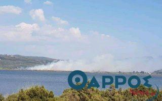 Πηγή φωτογραφίας:tharrosnews.gr