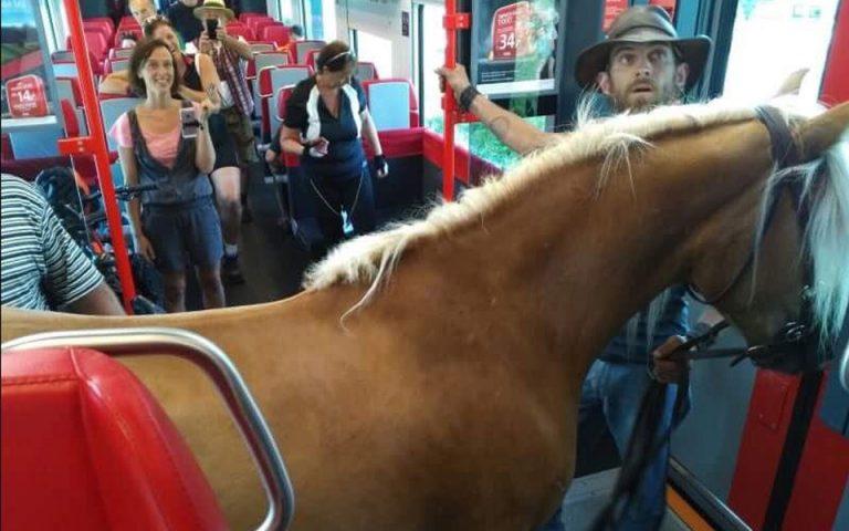 Αυστρία: Πήρε το τρένο παρέα με το… άλογό του (εικόνες)