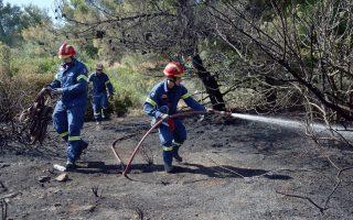 Πυροσβέστες επιχειρούν  στην κατάσβεση της πυρκαγιάς στο Άλσος Συγγρού, την Παρασκευή 1 Ιουνίου 2018. Πυρκαγιά εκδηλώθηκε στο άλσος Συγγρού, αργά το μεσημέρι, από άγνωστη μέχρι στιγμής αιτία, ενώ, πριν από λίγο τραυματίστηκε ελαφρά ένας εθελοντής πυροσβέστης, ο οποίος διακομίζεται αυτήν την ώρα σε νοσοκομείο, για προληπτικούς λόγους. Η φωτιά ξέσπασε σε χώρο με χαμηλή βλάστηση, από την πλευρά της οδού Ευκαλύπτων, ενώ στο σημείο επιχειρούν αυτήν την ώρα 25 πυροσβέστες με 11 οχήματα και 3 πυροσβεστικά αεροσκάφη. Σύμφωνα με την Πυροσβεστική, δεν υπάρχει κίνδυνος επέκτασης της πυρκαγιάς, τουλάχιστον έως αυτήν την ώρα. ΑΠΕ-ΜΠΕ/ΑΠΕ-ΜΠΕ/ΟΡΕΣΤΗΣ ΠΑΝΑΓΙΩΤΟΥ