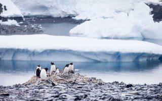 Η τήξη των πάγων στη Γροιλανδία μπορεί να εξασθενίσει το ρεύμα του Κόλπου του Μεξικού, που ήδη βρίσκεται στο πιο αδύναμο επίπεδο των τελευταίων 1.600 ετών.