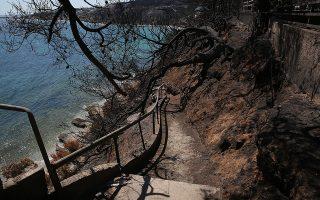 Δρομάκι το οποίο είναι μία από τις λιγοστές προσβάσεις στην παραλία Αργυρή Ακτή, δίπλα στο οικόπεδο όπου βρήκαν τραγικό θάνατο 26 άνθρωποι την ημέρα της φονικής πυρκαγιάς στην περιοχή Μάτι, 39 χλμ από την Αθήνα, Τετάρτη 8 Αυγούστου 2018. ΑΠΕ-ΜΠΕ/ΑΠΕ-ΜΠΕ/ΟΡΕΣΤΗΣ ΠΑΝΑΓΙΩΤΟΥ
