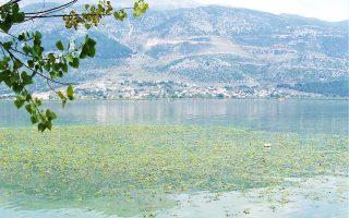 Ο Δήμος Ιωαννιτών έκανε πρόταση στην κυβέρνηση για σύσταση δημοτικού λιμναίου ταμείου, που θα είναι υπεύθυνο για την αδειοδότηση των εργασιών που προτείνονται και για το «κυνήγι» των παραβατών.