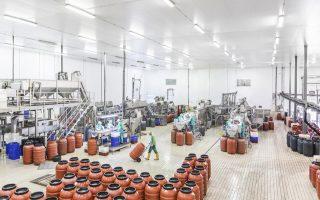 Oι εγκαταστάσεις της Κατερίνης περιλαμβάνουν συνολικά οκτώ γραμμές παραγωγής για τη συσκευασία των επιτραπέζιων ελιών σε μεγάλη ποικιλία.