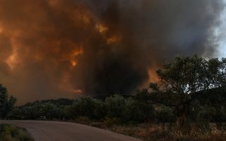 Φλόγες και καπνοί από την πυρκαγιά που ξέσπασε στο Κοντοδεσπότι στο Δήμο Διρφύων – Μεσσαπίων Εύβοιας, κοντά στα Ψαχνά σε πυκνή δασική έκταση σε δύσβατο σημείο, την Κυριακή 12 Αυγούστου 2018. Εκκενώθηκαν προληπτικά τα χωριά Κοντοδεσπότι και Σταυρός. Έκλεισε προληπτικά για λόγους ασφαλείας η κυκλοφορία στο δρόμο από τη Χαλκίδα προς τη Βόρεια Εύβοια, καθώς σύμφωνα με την Αστυνομική Διεύθυνση Εύβοιας η φωτιά πλησιάζει προς τον επαρχιακό δρόμο ο οποίος έχει καλυφθεί με πολλούς καπνούς. Σύμφωνα με την Πυροσβεστική, για την κατάσβεση επιχειρούν 62 πυροσβέστες με 28 οχήματα, 4 αεροσκάφη, 4 ελικόπτερα και 2 Πετζετέλ (Pezetel). ΑΠΕ ΜΠΕ/ΑΠΕ ΜΠΕ/ΒΑΣΙΛΗΣ ΑΣΒΕΣΤΟΠΟΥΛΟΣ