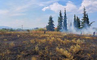 Φωτιά ξέσπασε στην περιοχή της Άριας  Ναυπλίου στον επαρχιακό Ναυπλίου Τολού  μέσα σε χωράφι κοντά σε οικισμό, Δευτέρα 10 Σεπτεμβρίου 2018. Τέσσερα  οχήματα της πυροσβεστικής υπηρεσίας Ναυπλίου με οκτώ άνδρες επιχείρησαν για την κατάσβεση  της φωτιάς. Τα αίτια που προκάλεσαν την πυρκαγιά θα ερευνηθούν από την Πυροσβεστική υπηρεσία Ναυπλίου.  Σύμφωνα με δηλώσεις  αξιωματικών της Π.Υ , κάνουν έκκληση για καθαρισμό των οικοπέδων από ξερά χόρτα και οτιδήποτε άλλο εύφλεκτο υπάρχει σε αυτά.  ΑΠΕ-ΜΠΕ /ΑΠΕ-ΜΠΕ/ΜΠΟΥΓΙΩΤΗΣ ΕΥΑΓΓΕΛΟΣ