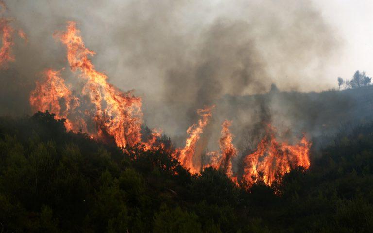 Εκθεση Κομισιόν: 16 εκατ. στρέμματα έχουν καεί στην Ελλάδα από το 1980