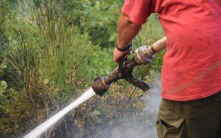 Πυροσβέστες επιχειρούν για την κατάσβεση της πυρκαγιάς στο Κοντοδεσπότι στο Δήμο Διρφύων – Μεσσαπίων Εύβοιας, κοντά στα Ψαχνά σε πυκνή δασική έκταση σε δύσβατο σημείο, την Κυριακή 12 Αυγούστου 2018. Εκκενώθηκαν προληπτικά τα χωριά Κοντοδεσπότι και Σταυρός. Έκλεισε προληπτικά για λόγους ασφαλείας η κυκλοφορία στο δρόμο από τη Χαλκίδα προς τη Βόρεια Εύβοια, καθώς σύμφωνα με την Αστυνομική Διεύθυνση Εύβοιας η φωτιά πλησιάζει προς τον επαρχιακό δρόμο ο οποίος έχει καλυφθεί με πολλούς καπνούς. Σύμφωνα με την Πυροσβεστική, για την κατάσβεση επιχειρούν 62 πυροσβέστες με 28 οχήματα, 4 αεροσκάφη, 4 ελικόπτερα και 2 Πετζετέλ (Pezetel). ΑΠΕ ΜΠΕ/ΑΠΕ ΜΠΕ/ΒΑΣΙΛΗΣ ΑΣΒΕΣΤΟΠΟΥΛΟΣ