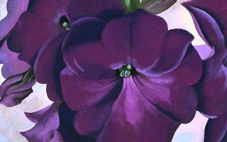 Μία επιλογή από τα πολύχρωμα άνθη της Georgia O' Keeffe φιλοξενείται στο Μουσείο Τέχνης της Νότιας Καρολίνας.