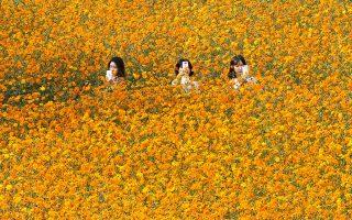 Φωτογραφία: AP Photo/Ahn Young-joon
