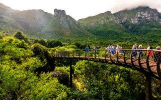 Ο Εθνικός Βοτανικός Κήπος Kirstenbosch αναδεικνύει τον πλούτο της ενδημικής βλάστησης της χώρας. (Φωτογραφία: VISUALHELLAS.GR)