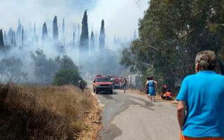 Πυροσβεστικά οχήματα επιχειρούν στην κατάσβεση της πυρκαγιά στο χωριό Ραχτάδες, την Πέμπτη 23 Αυγούστου 2018.  Στην  εκκένωση του χωριού Ραχτάδες προέβη η Πυροσβεστική Υπηρεσία Κέρκυρας μετά τη μεγάλη φωτιά που έχει ξεσπάσει και βρίσκεται σε εξέλιξη,  σε δασική έκταση, βορειοδυτικά του νησιού. Στην εκκένωση του χωριού συμμετείχε και ισχυρή δύναμη της Αστυνομίας, ενώ στο σημείο βρίσκονται δυνάμεις της Περιφερειακής Ενότητας Κέρκυρας και του Δήμου. Αυτή την ώρα στην κατάσβεση της φωτιάς συμμετέχουν από αέρος τρία καναντέρ και δύο πετζετέλ. Αντιμέτωποι με τη φωτιά βρίσκονται από νωρίς το μεσημέρι όλη η δύναμη της Πυροσβεστικής Υπηρεσία του νησιού που κινητοποιήθηκε άμεσα, αστυνομικές δυνάμεις  και ομάδες εθελοντών.  ΑΠΕ- ΜΠΕ/ΑΠΕ- ΜΠΕ/ ΤΑΠΑΣΚΟΥ Α.
