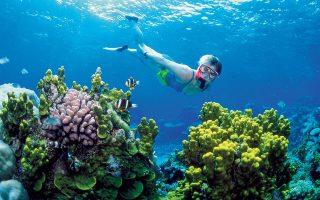 Μετά τη νέα εκτίμηση για την απορροφητικότητα των θαλασσών, οι εκπομπές διοξειδίου του άνθρακα, του κύριου αερίου του θερμοκηπίου, θα πρέπει να μειωθούν κατά 25% σε σχέση με τις προηγούμενες εκτιμήσεις.
