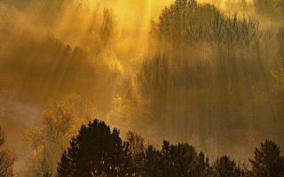 Η καλημέρα. Δεν θα μπορούσε να υπάρχει καλύτερη εικόνα που να αποδεικνύει την ευλογία του ήλιου στην φύση και την ζωή μας. Οι ακτίνες του φιλτραρισμένες από τα δένδρα ποτίζουν κάθε σπιθαμή αέρα και γης. Η φωτογραφία από το Recklinghausen της Δυτικής Γερμανίας. (Marcel Kusch/dpa via AP)