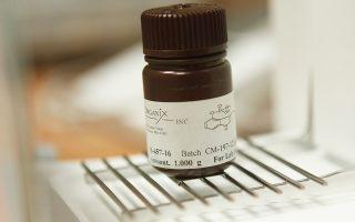 Το πειραματικό σκεύασμα CBL0137 αναμένεται να λάβει άδεια κυκλοφορίας στις ΗΠΑ εντός των προσεχών ετών.