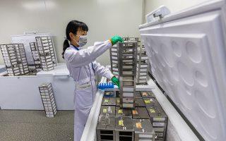 Η γενετική τροποποίηση ανθρώπινων εμβρύων στην Κίνα αποτελεί σημαντική παραβίαση των κανόνων βιοηθικής.